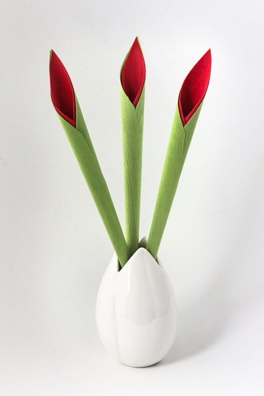 RELIEF_Fruits_Passion_Tulipe_Design_Produit-533x800 Fruits & Passion - Vase diffuseur