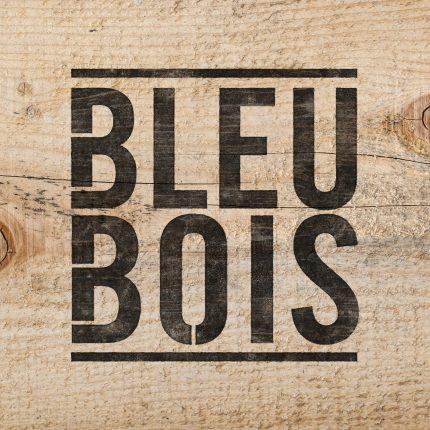bleu_bois_logo_pochoir_wood_003-430x430 Réalisations